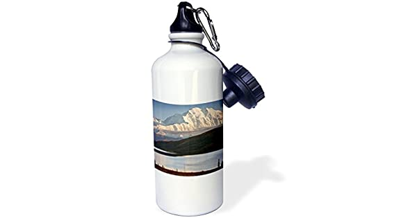 3dRose wb/_229467/_2 Musk Ox with Calf Straw Water Bottle