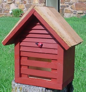 Bird Houses by Mark Homestead Ladybug House - Rancho Red by Bird Houses by Mark