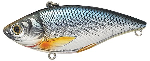Koppers Shiner Trap Golden Sinking Lure, 1/4-Ounce, Silver/Blue (Shiner Lures)