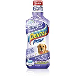 SynergyLabs Dental Fresh Water Additive – Advanced Plaque and Tartar Formula for Dogs – Clinically Proven, Add to Pet's Water Bowl to Whiten Teeth, Eliminate Bad Breath and Improve Oral Health (17 oz)