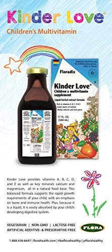 Salus Haus – Childrens Multivitamin Kinder Love Liquid 17 Ounce – Vitamins A, B, C, D, E, Calcium, Magnesium – Kosher, Non GMO, Vegetarian