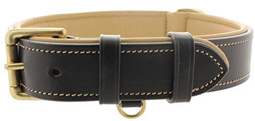 Viosi Leather Padded Dog Collar - Made of Genuine Kingston Luxury Leather [Large, Black]
