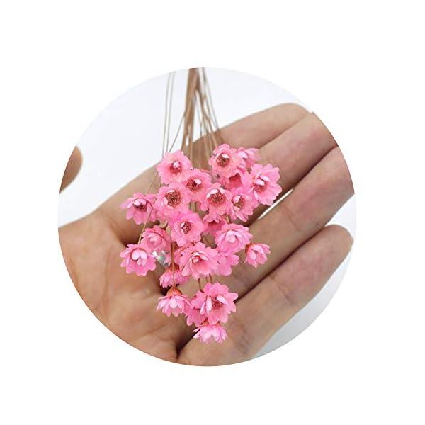Sevem-D 30 Pcs Decorative Dried Flowers Mini Daisy Chamomile Flowers Bouquet Natural Plants Small Floral,Pink