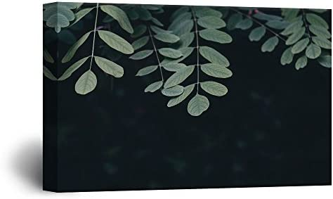 Leaves with Black Background '