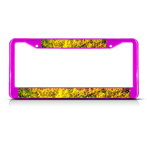 Sign Destination Metal License Plate Frame Solid Insert Hypericum Flowers Car Auto Tag Holder - Hot Pink 2 Holes, One Frame