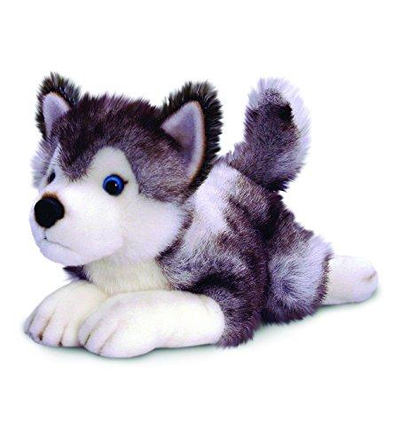 Husky Hund Plüschtier