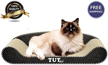 Tutu - Póster de Gato para Gatos con diseño de Gato, cartón ...