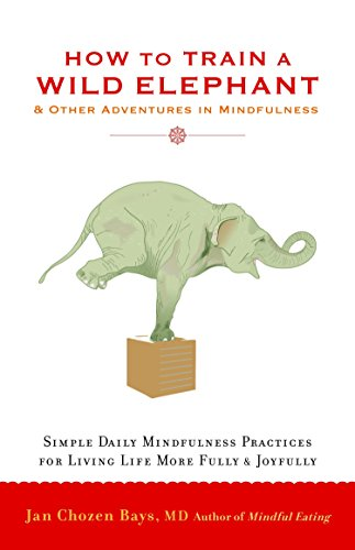 Image of How to Train a Wild Elephant: And Other Adventures in Mindfulness