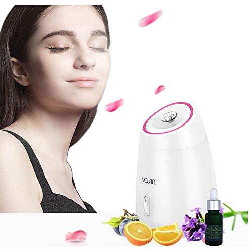 BABY-WZL Steaming Face Hot Spray Home Beauty Equipment Professional Thermal Spa Facial Sauna Mist Steamer and Steam Inhaler, Face Humidifier Skin Care Facial Whitening Humidifier