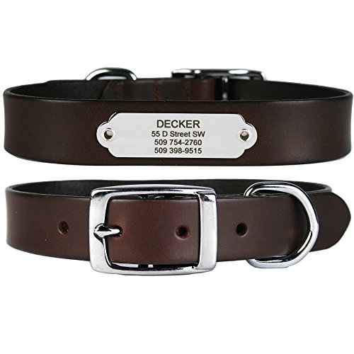 GoTags Leather Dog Collar with Rivet-on Nameplate in Stainless Steel, Personalized Engraved Name Plate ID Tag on Soft, Brown Leather Dog Collar for Small, Medium and Large Dogs, (Dark Brown)