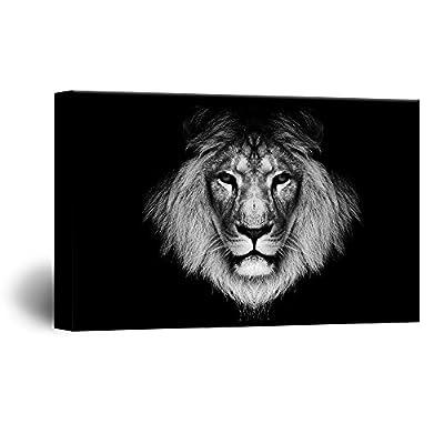 Lion Print Black Background - Canvas Art