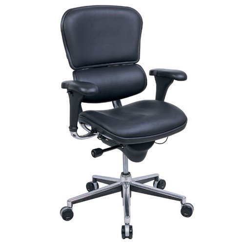 - Eurotech Seating Ergohuman Collection High Back Ergonomic Executive Chair in Black Leather