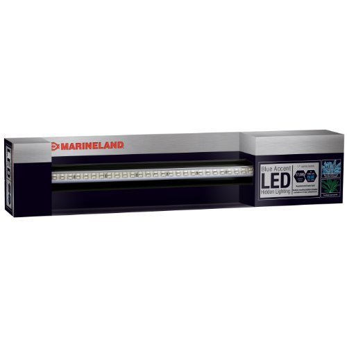 Marineland Accent Hidden LED System, 17-Inch, bluee by Marineland