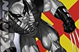 Marvel X-Men Wolverine Fight Magnet M-XM-0007