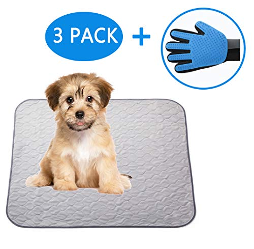 Paw Jamboree Washable Pee Pads for Dogs 2 Large & 1 Travel Dog Training pad Absorbent Waterproof Pee Pad Reusable Puppy Training Pads Dog Whelping Pads