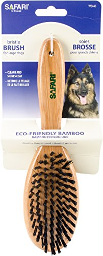 Safari Bristle Dog Brush with Bamboo Handle, Medium/Large by Safari Pet Products