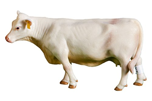 Little Buster Toys Unisex-Adult Kid s Charloais Cow
