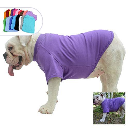 (Lovelonglong Bulldog Clothes Dog Clothing Blank T-Shirt Tee Shirts for French Bulldog English Bulldog American Pit Bull Pugs 100% Cotton Skin Care Purple B-L)