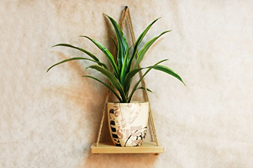 Wooden Hanging Wall Shelf with Rope 9x5 Inch Modern Decorative Small Mid Century Wood Plant Shelves Swing Pot Mount Holder Minimalist Farmhouse Floating Stand for Living Room Housewarming Gift (Pot Pine)