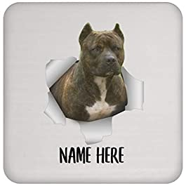 Funny Personalized American Pit Bull Terrier Brindle Custom Name White Christmas 2021 Gifts Coaster