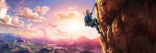41Zn5ENLcPL - The Legend of Zelda: Breath of the Wild - Wii U
