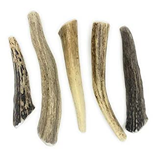 Perfect Pet Chews - Deer Antler Dog Chew - Grade A, All Natural, Organic, and Long Lasting Treats - Made from Naturally Shed Antlers in The USA - Small Treat for Dogs Weighing 10-20 lbs - 5-Count