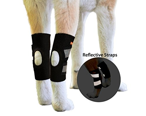 NeoAlly Dog Rear Leg Braces Ankle Support [PAIR] Canine Hind Hock Sleeves with Safety Reflective Straps for Injury, Sprain, Wound Healing and Loss of Stability from Arthritis (S (Reflective Leg Wraps)