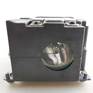 Kosrae best-sold BQC-PGM10X//1lámpara bombilla con carcasa compatible COMPATIBLES para Sharp notevision M10S/notevision M10x/PG-M10S, PG-M10X Proyector