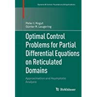 Optimal Control Problems for Partial Differential Equations on Reticulated Domains: Approximation and Asymptotic Analysis (Systems & Control: Foundations & Applications)