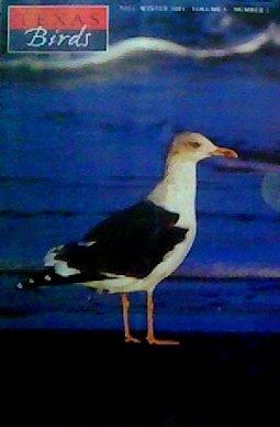 Texas Birds (Volume 5, Number 1)