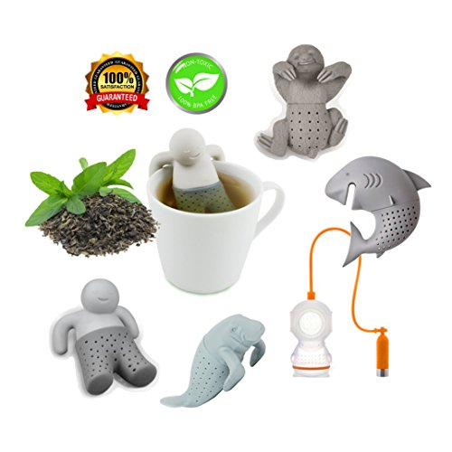 Loose Leaf Tea Infuser Set of 5 - Packaged in a Box - Great Gift for Tea Lovers