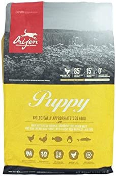 What Is The Best Dog Food for a Beagle? | Orijen Puppy | Dogfood.guru