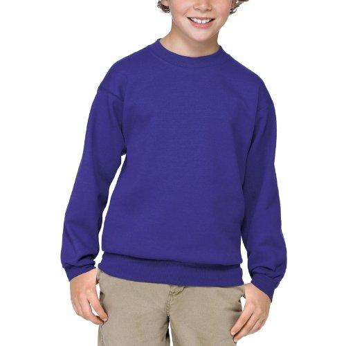 Hanes Comfortblend Pullover Fleece (Hanes 7.8 oz Youth COMFORTBLEND EcoSmart Fleece Crew)