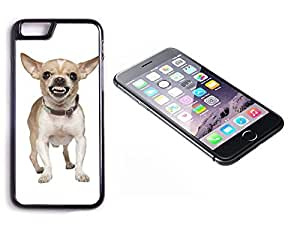 iPhone 6 Plus Black Plastic Hard Case with High Gloss Printed Insert Chihuahua Mad