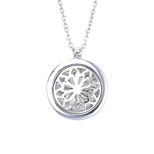 ZX Fashion Aromatherapy Essential Oil Diffuser Pendant Necklace Stainless Steel Locket Pendant by ZX Fashion