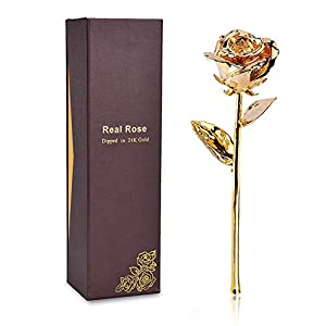 LOVAC Gold Dipped Rose, 24k Gold Eternity Rose with Transparent Stand Representing Immortal Love,Best Gift for Valentines Day, Mothers Day,Birthday Gift 28