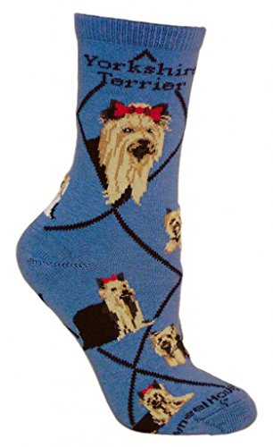 Yorkshire Terrier Animal Socks On Blue 9-11