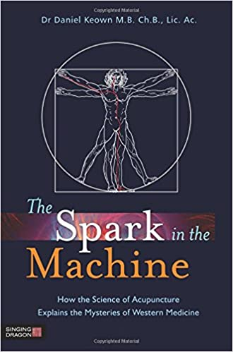 What Is In Spark >> The Spark In The Machine How The Science Of Acupuncture