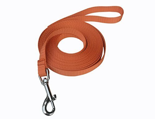 Hulless 10 Feet dog leash,Nylon training leash,Dog traction rope,Orange dog leashes for small dogs,Great for dog training,Play,Camping or Backyard.