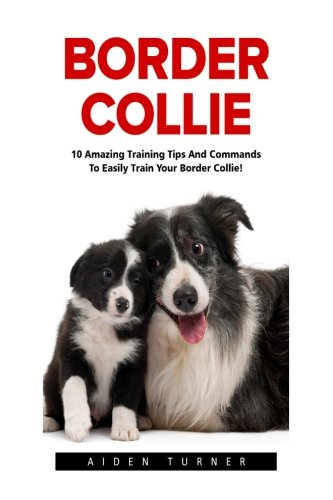Border Collie: 10 Amazing Training Tips And Commands To Easily Train Your Border Collie! (Dog Training Guide, Border Collies, Border Collie Puppy) ()