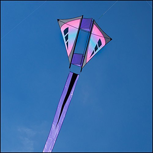 Prism Isotope French Military Kite, Iris by Prism Kites B01M368JIM