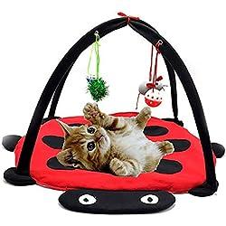 ETH Creativas Rojo De Juguete Gato Juguetes For Gatos Gato Tienda De Campaña Hamaca Gato De Juguete Columpio (61 * 61 * 34cm) Durable