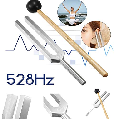 Wffo Knocker Frequency of Love Miracle Healing Set Tuning Health Care 528HZ-Check in Distinguishing Nature of Deafness-1 PCS Tuning Fork-1 PCS -