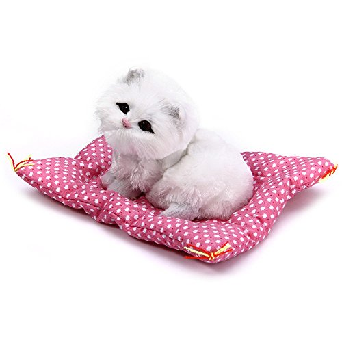 Simulation Kitten Cat Animal Doll, Product Size (LxWxH) : 13x10x6 cm