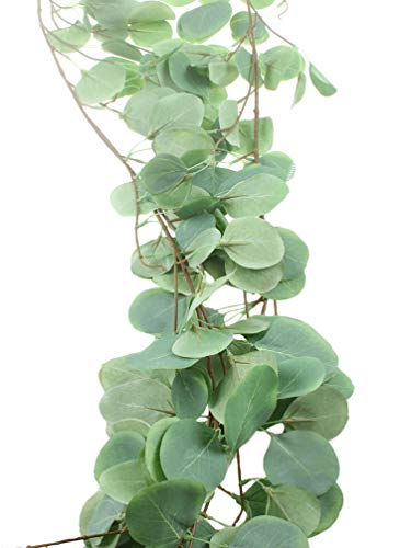 LiQiDcor-55FT-Long-Artificial-Vines-Faux-Silk-Eucalyptus-Garland-Greenery-Wedding-Backdrop-Arch-Wall-Decor-Table-Runner-Wedding-Decorations-Artificial-Silver-Dollar-Eucalyptus-Garland-Vine-Un-2