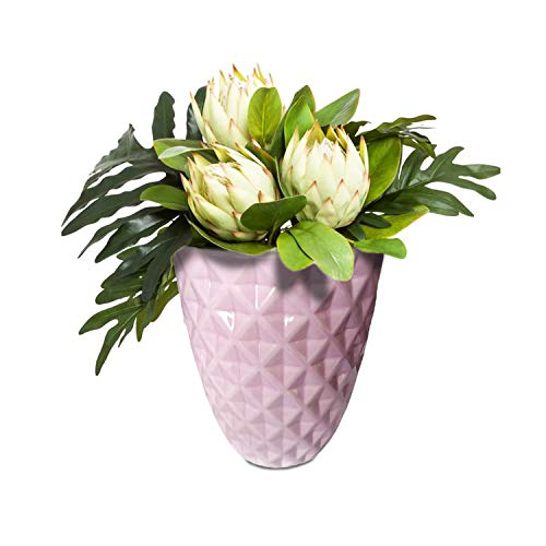 Succulent Planter, Diamond Design Light Pink Round Ceramic Orchid Pot 5.5 Inch Cactus Plant Container Indoor Plant Pot by Xiamen Forwarding Gift Land