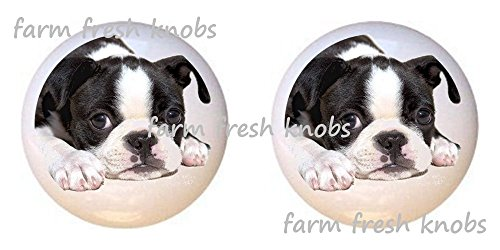 - SET OF 2 KNOBS - Boston Terrier Puppy Dog - Dogs - DECORATIVE Glossy CERAMIC Cupboard Cabinet PULLS Dresser Drawer KNOBS