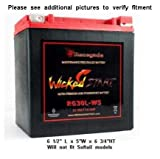 Renegade RG30L-WS 12 Volt 30 AH Ultra Premium Wicked Start 600+ CCA Touring Battery