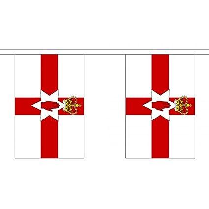 3 metros 10 (22,86 cm x 15,24 cm) de la bandera de Irlanda del