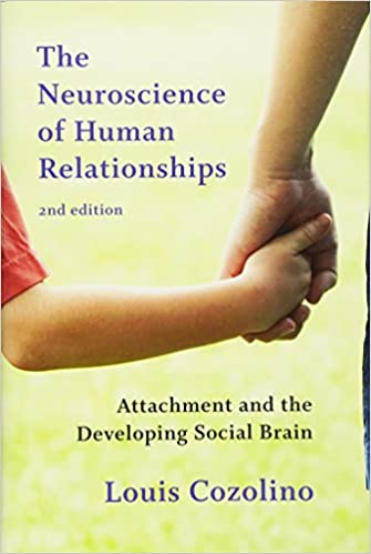 The neuroscience of human relationships attachment and the the neuroscience of human relationships attachment and the developing social brain second edition norton series on interpersonal neurobiology second fandeluxe Image collections